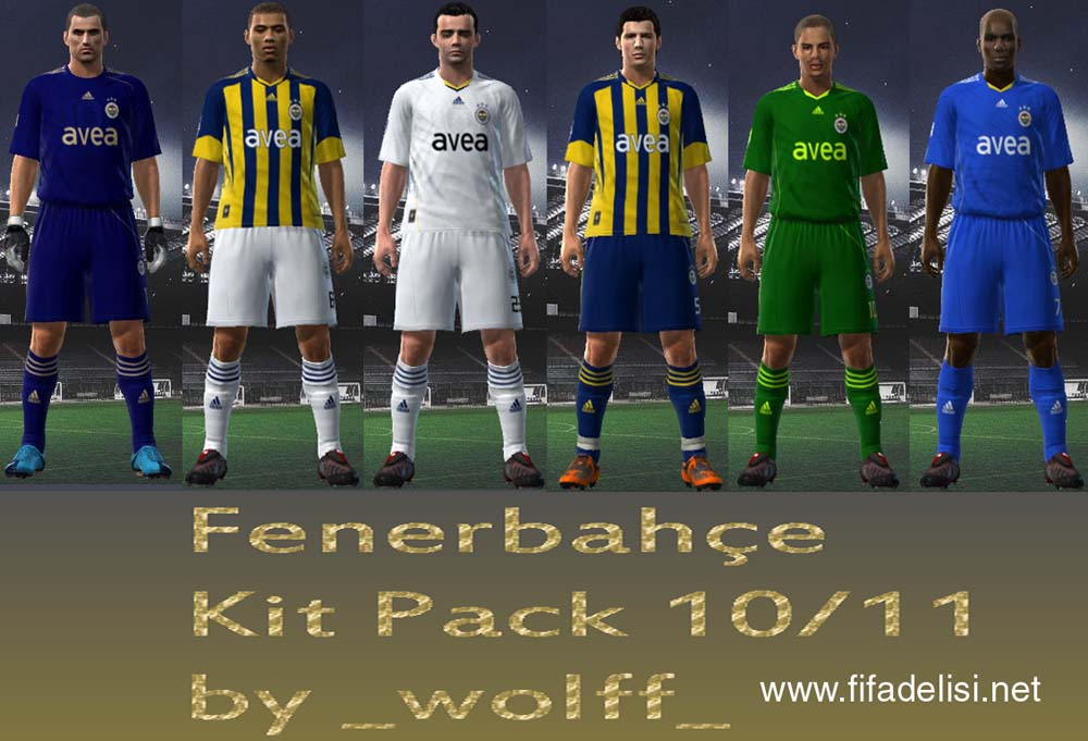 Fenerbahce 2010-2011